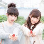 【悲報】若者のフルーツ離れ!