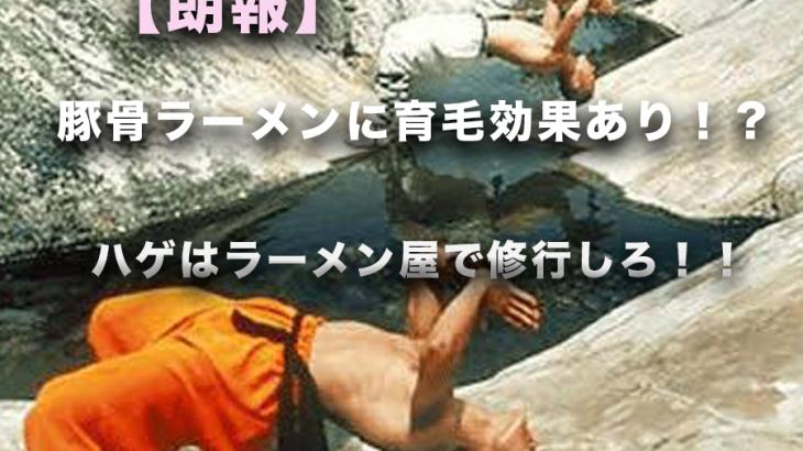 【朗報】豚骨ラーメンに育毛効果あり・・・!?ハゲは今すぐ豚骨ラーメン屋で修行しろ!!!